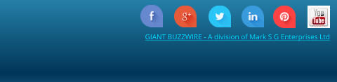 GIANT BUZZWIRE - A division of Mark S G Enterprises Ltd